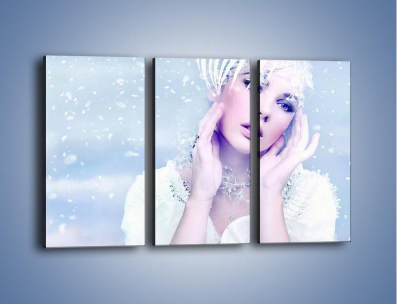 Obraz na płótnie – Delikatna królowa śniegu – trzyczęściowy L224W2