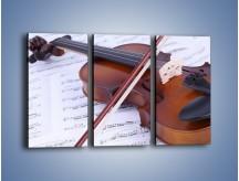 Obraz na płótnie – Melodia grana na skrzypcach – trzyczęściowy O003W2
