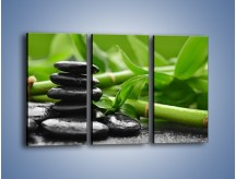Obraz na płótnie – Czarne kamienie wśród bambusów – trzyczęściowy O137W2