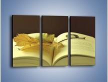 Obraz na płótnie – Liść na ciekawej powieści – trzyczęściowy O163W2