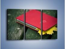 Obraz na płótnie – Książka z jesiennym akcentem – trzyczęściowy O167W2