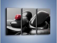 Obraz na płótnie – Czerwień wśród czarności – trzyczęściowy O212W2