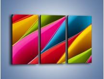 Obraz na płótnie – Idealna kolorowa kompozycja – trzyczęściowy O219W2
