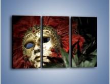 Obraz na płótnie – Maska pełna tajemnicy – trzyczęściowy O252W2