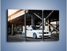 Obraz na płótnie – BMW E92 M3 Coupe pod starym mostem – trzyczęściowy TM088W2