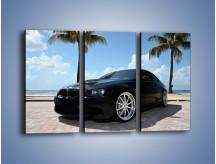 Obraz na płótnie – BMW M3 GTS – trzyczęściowy TM095W2
