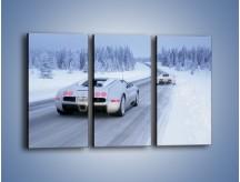 Obraz na płótnie – Bugatti Veyron w śniegu – trzyczęściowy TM134W2