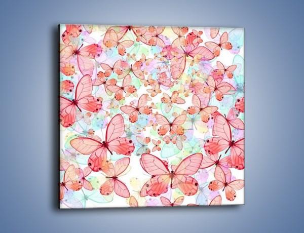 Obraz na płótnie – Z motylem w stronę światła – jednoczęściowy kwadratowy GR402