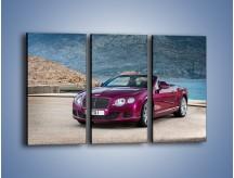 Obraz na płótnie – Bentley Continental Speed GT – trzyczęściowy TM187W2