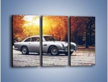 Obraz na płótnie – Aston Martin DB5 – trzyczęściowy TM208W2