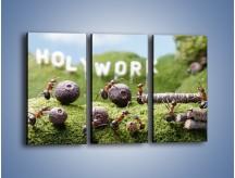 Obraz na płótnie – Ciężka praca mrówek – trzyczęściowy Z308W2