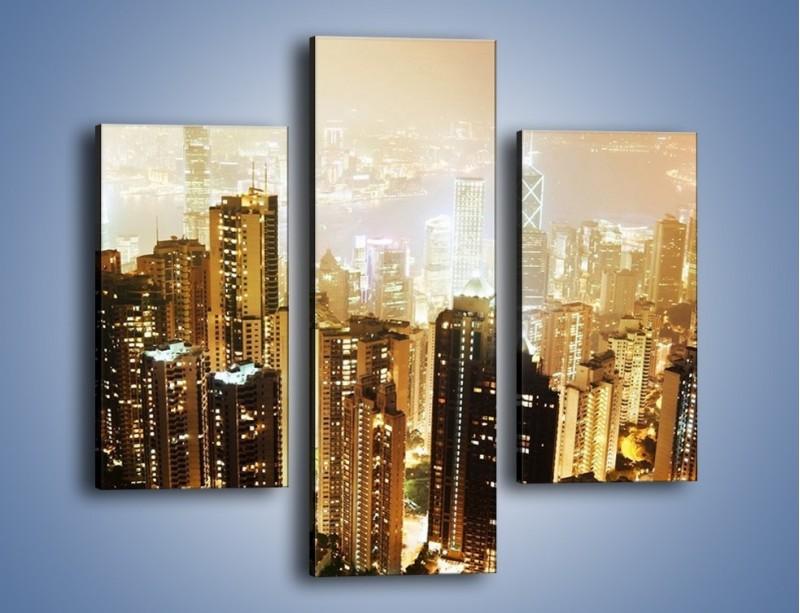 Obraz na płótnie – Miasto widziane z góry – trzyczęściowy AM007W3
