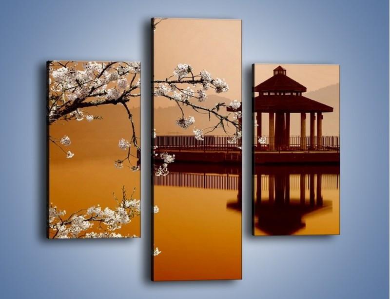 Obraz na płótnie – Kwiaty na tle Sun Moon Lake – trzyczęściowy AM301W3