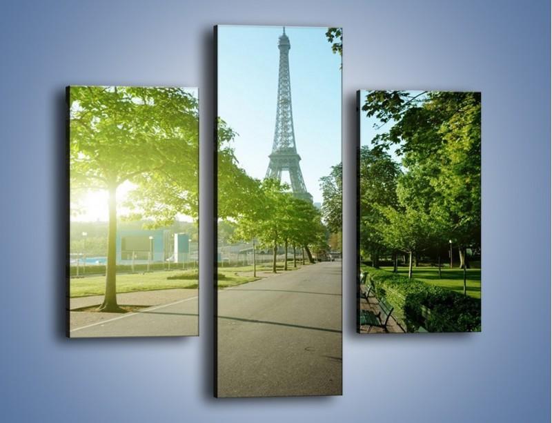 Obraz na płótnie – Uliczka w parku na tle Wieży Eiffla – trzyczęściowy AM308W3