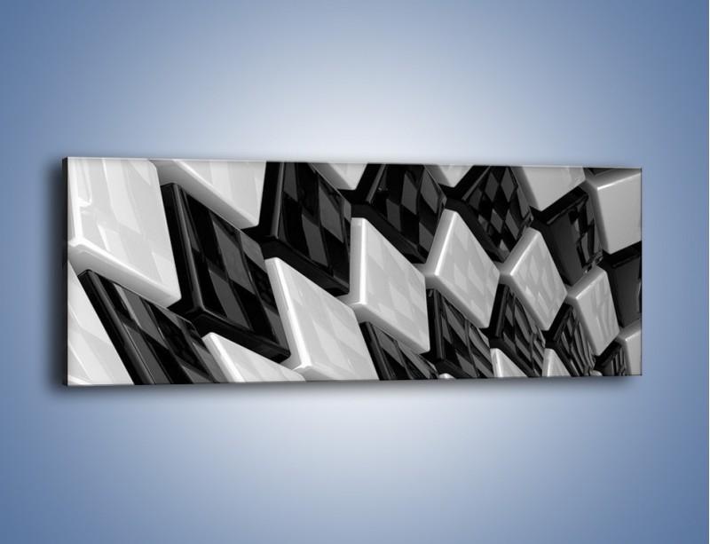 Obraz na płótnie – Czarne czy białe – jednoczęściowy panoramiczny GR425
