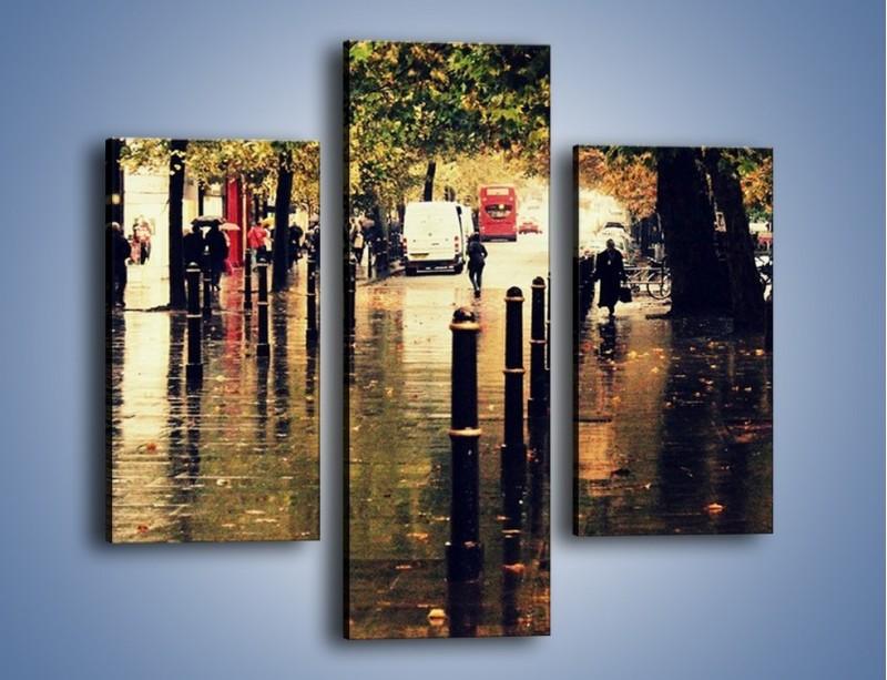 Obraz na płótnie – Deszczowa jesień w Moskwie – trzyczęściowy AM383W3