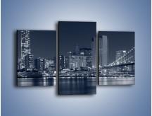 Obraz na płótnie – Manhattan w jednolitym kolorze – trzyczęściowy AM645W3