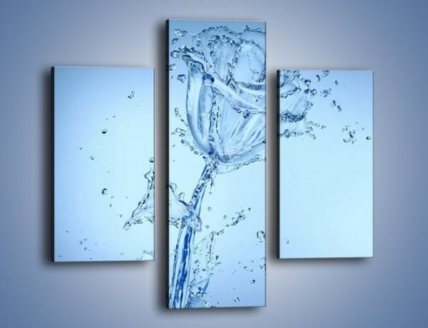 Obraz na płótnie – Kwiat tworzony wodą – trzyczęściowy GR182W3