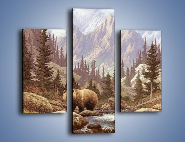Obraz na płótnie – Uwaga na niedźwiedzia – trzyczęściowy GR183W3