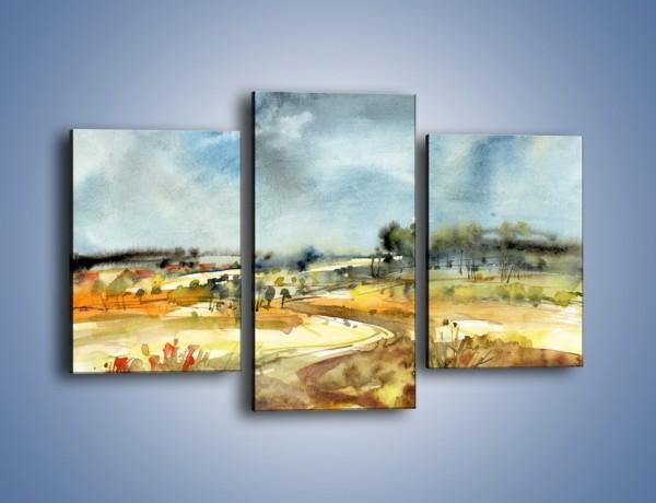 Obraz na płótnie – Łąka z krętą ścieżką – trzyczęściowy GR198W3