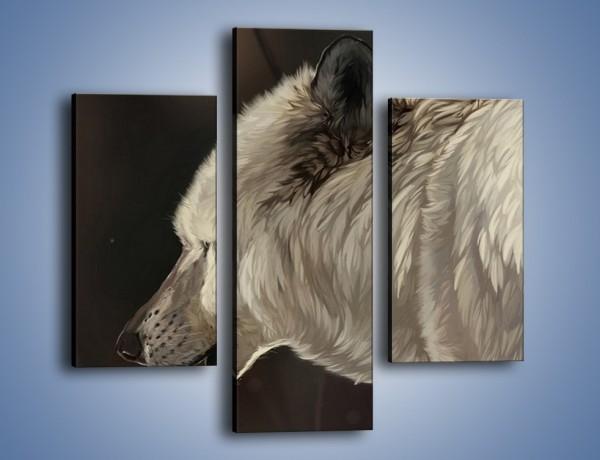 Obraz na płótnie – Uważne spojrzenie wilka – trzyczęściowy GR212W3