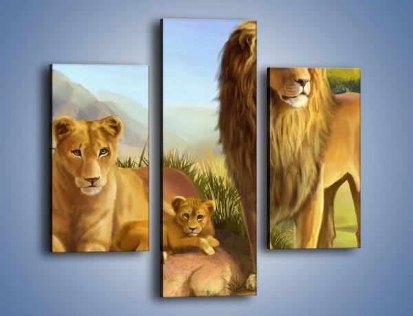 Obraz na płótnie – Lwia rodzina w komplecie – trzyczęściowy GR230W3