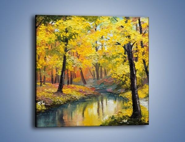 Obraz na płótnie – Jesienną pora w lesie – jednoczęściowy kwadratowy GR434
