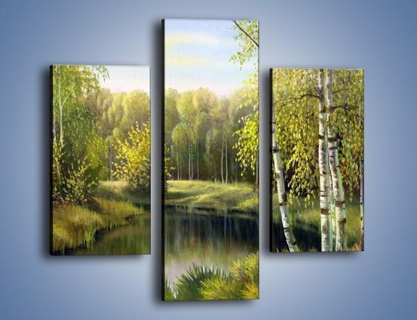 Obraz na płótnie – Tradycyjny leśny widok – trzyczęściowy GR285W3