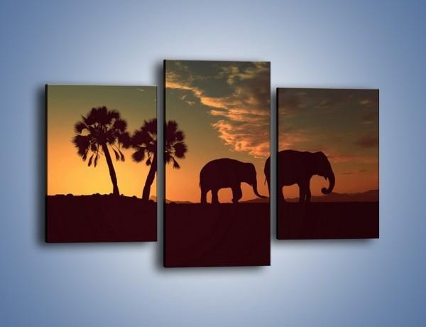 Obraz na płótnie – Powrót słoni do domu – trzyczęściowy GR286W3