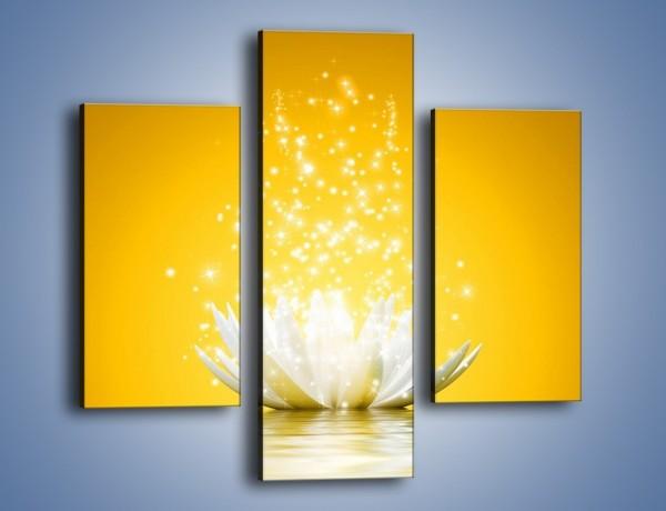Obraz na płótnie – Magia w świetlnej odsłonie – trzyczęściowy GR299W3