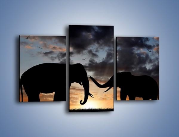 Obraz na płótnie – Dyskusja wśród słoni – trzyczęściowy GR309W3