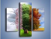 Obraz na płótnie – Cztery pory roku – trzyczęściowy GR333W3