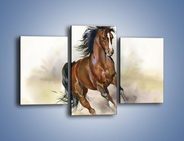 Obraz na płótnie – Piękny koń w galopie – trzyczęściowy GR338W3