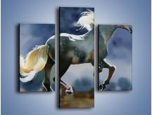 Obraz na płótnie – Bieg z koniem przez noc – trzyczęściowy GR339W3