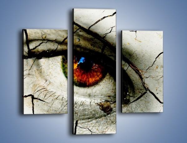 Obraz na płótnie – Popękane wspomnienia – trzyczęściowy GR406W3