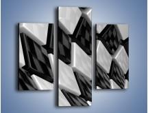 Obraz na płótnie – Czarne czy białe – trzyczęściowy GR425W3