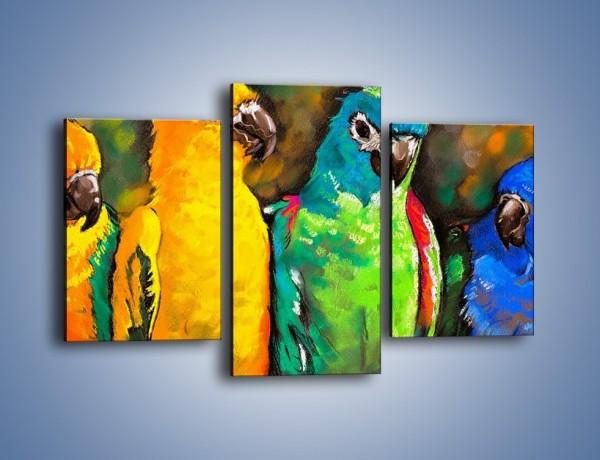 Obraz na płótnie – Rozmowa papuzich przyjaciół – trzyczęściowy GR492W3