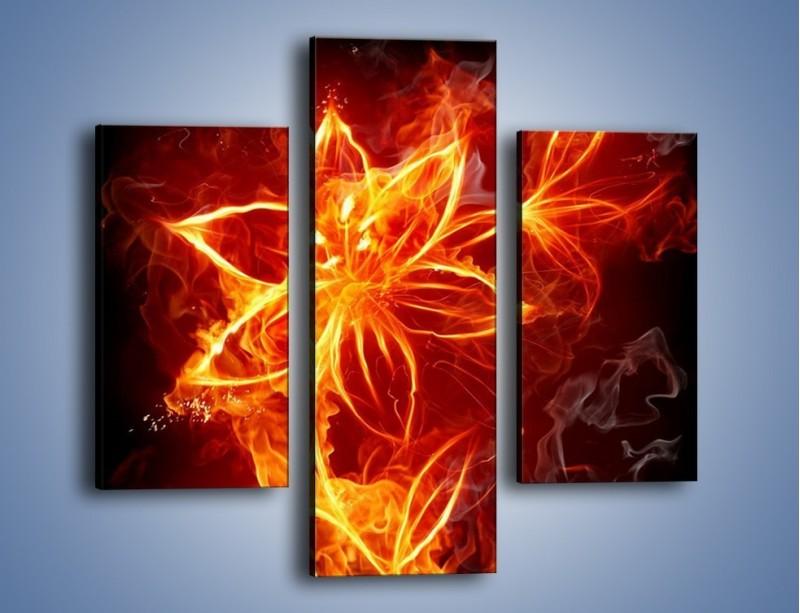 Obraz na płótnie – Spłonąć jak kwiat – trzyczęściowy GR527W3