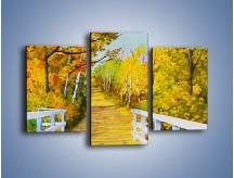Obraz na płótnie – Alejką w słoneczna jesień – trzyczęściowy GR540W3
