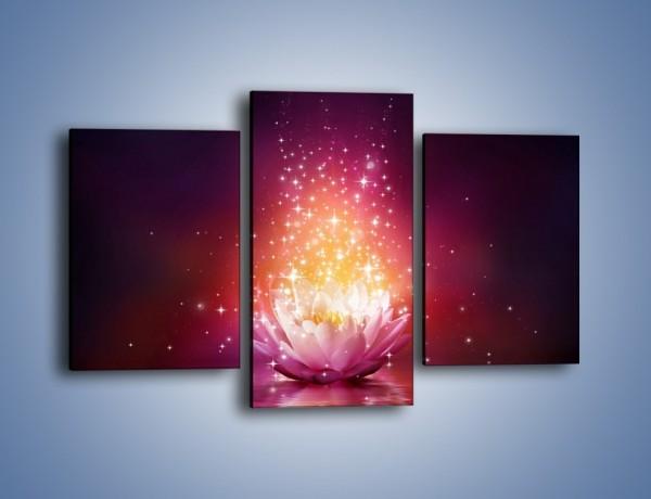 Obraz na płótnie – Kwiat zabłyszczał ciemna nocą – trzyczęściowy GR613W3