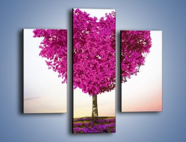 Obraz na płótnie – Miłość w kolorze purpury – trzyczęściowy GR624W3