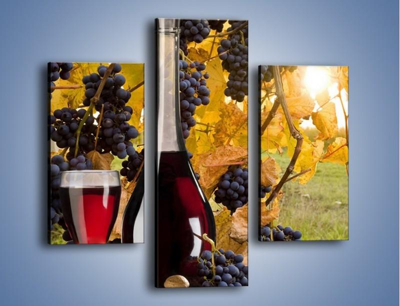 Obraz na płótnie – Wino wśród winogron – trzyczęściowy JN007W3