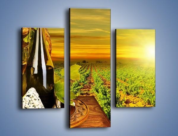 Obraz na płótnie – Wino o zachodzie słońca – trzyczęściowy JN024W3