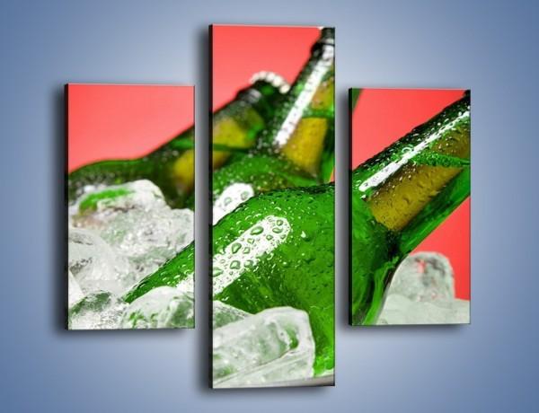 Obraz na płótnie – Zmrożone butelki piwa – trzyczęściowy JN025W3