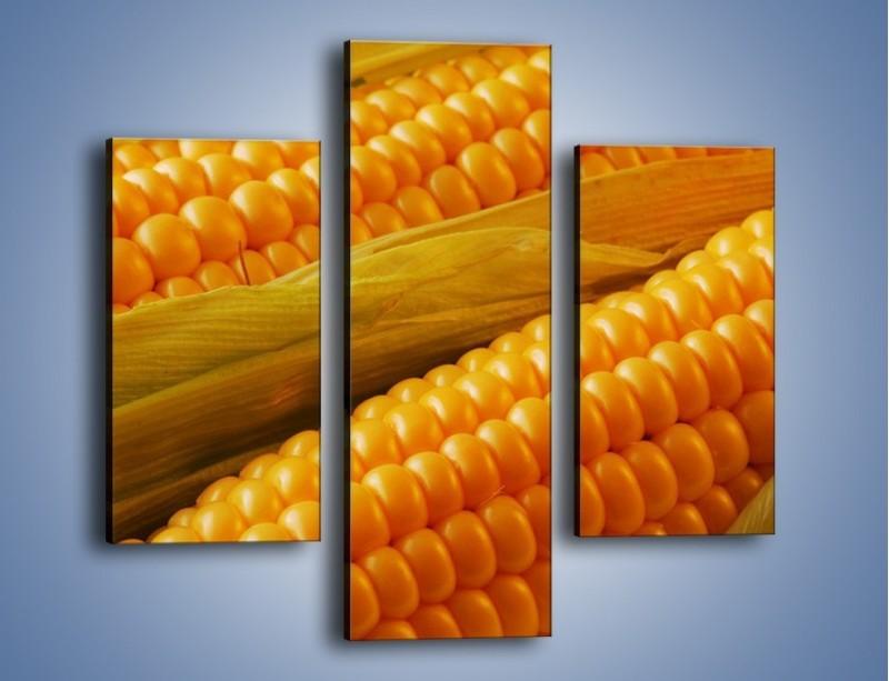 Obraz na płótnie – Kolby dojrzałych kukurydz – trzyczęściowy JN046W3