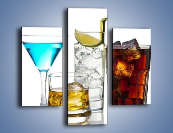 Obraz na płótnie – Kolorowe drinki – trzyczęściowy JN054W3