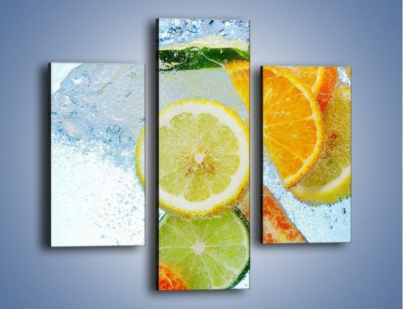 Obraz na płótnie – Zatopione plastry owoców – trzyczęściowy JN057W3