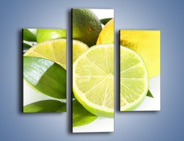 Obraz na płótnie – Mix cytrynowo-limonkowy – trzyczęściowy JN058W3
