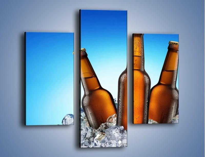Obraz na płótnie – Szron na butelkach piwa – trzyczęściowy JN075W3