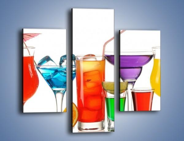 Obraz na płótnie – Wakacyjne party z alkoholem – trzyczęściowy JN092W3